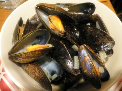 Mussels_1